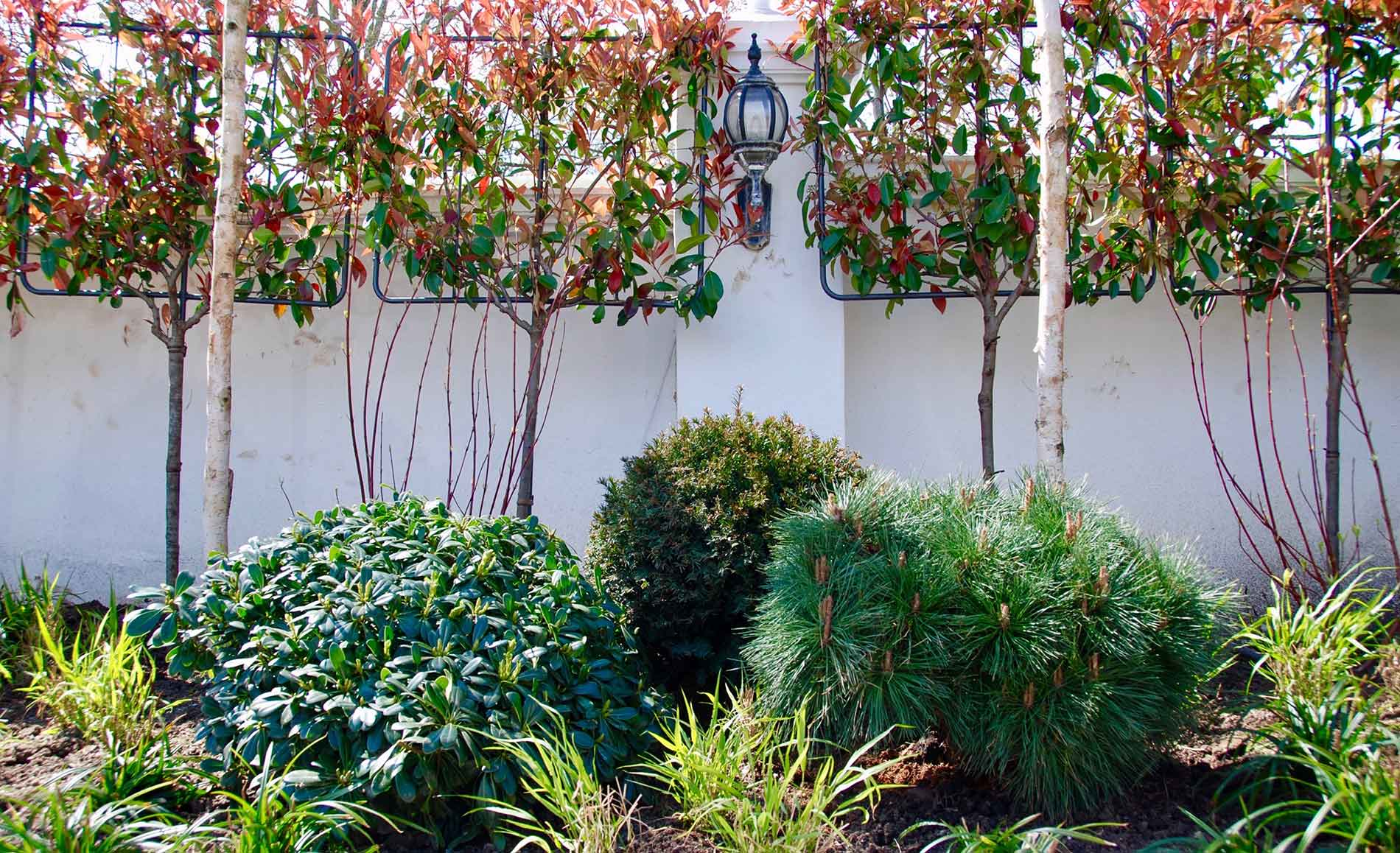garden design in brighton