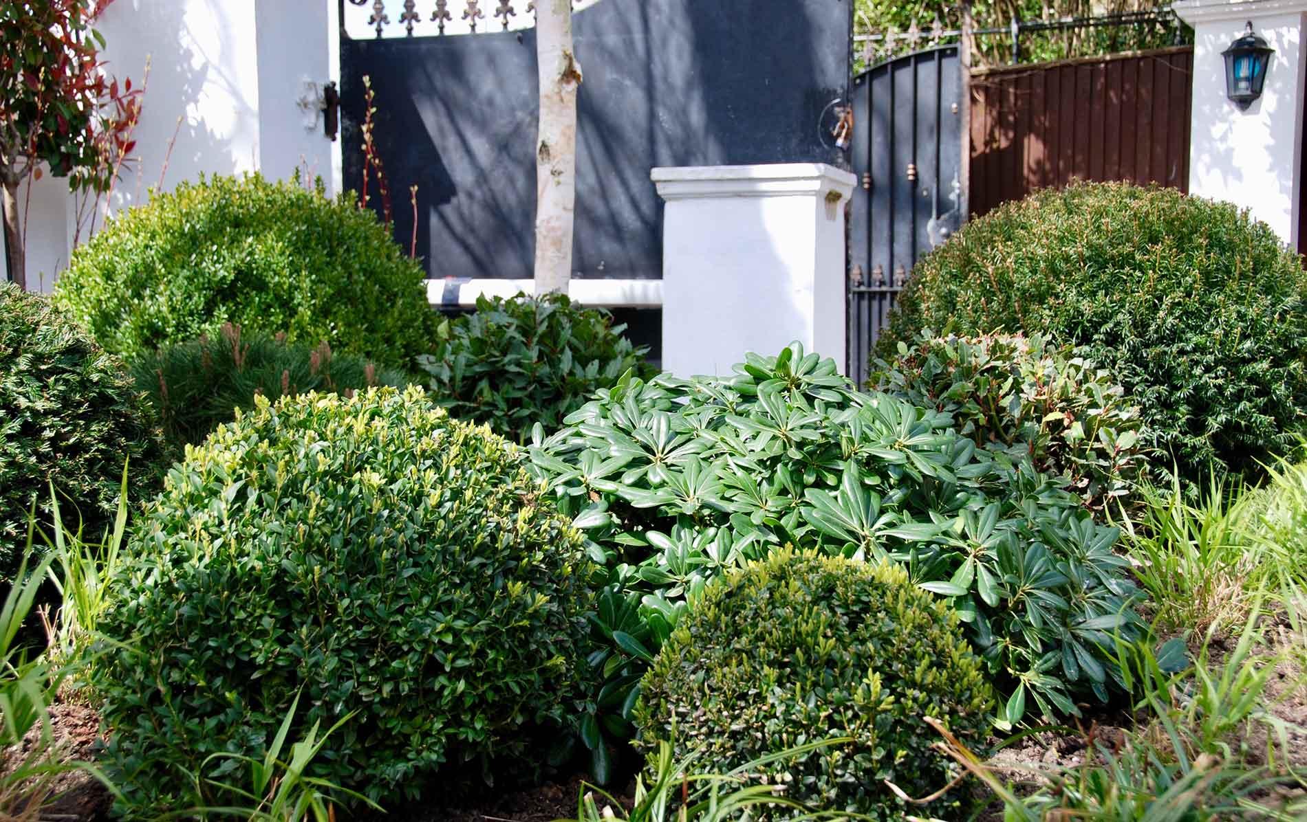 garden designer in brighton